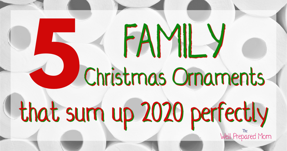 5 family 2020 christmas ornaments that sum up 2020 perfectly text with toilet paper background