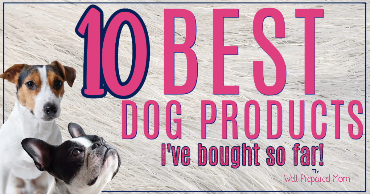 10 of the best dog products I've bought so far