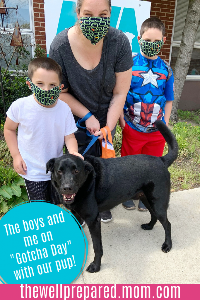 Mom and young boys with newly adopted 5 year old black lab dog.